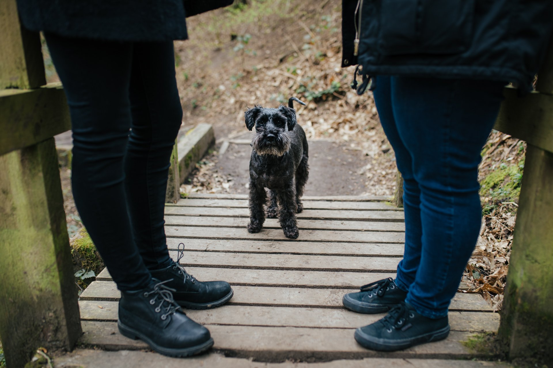 Black Dog standing between his owners during their engagement shoot in a woodland setting in Kent