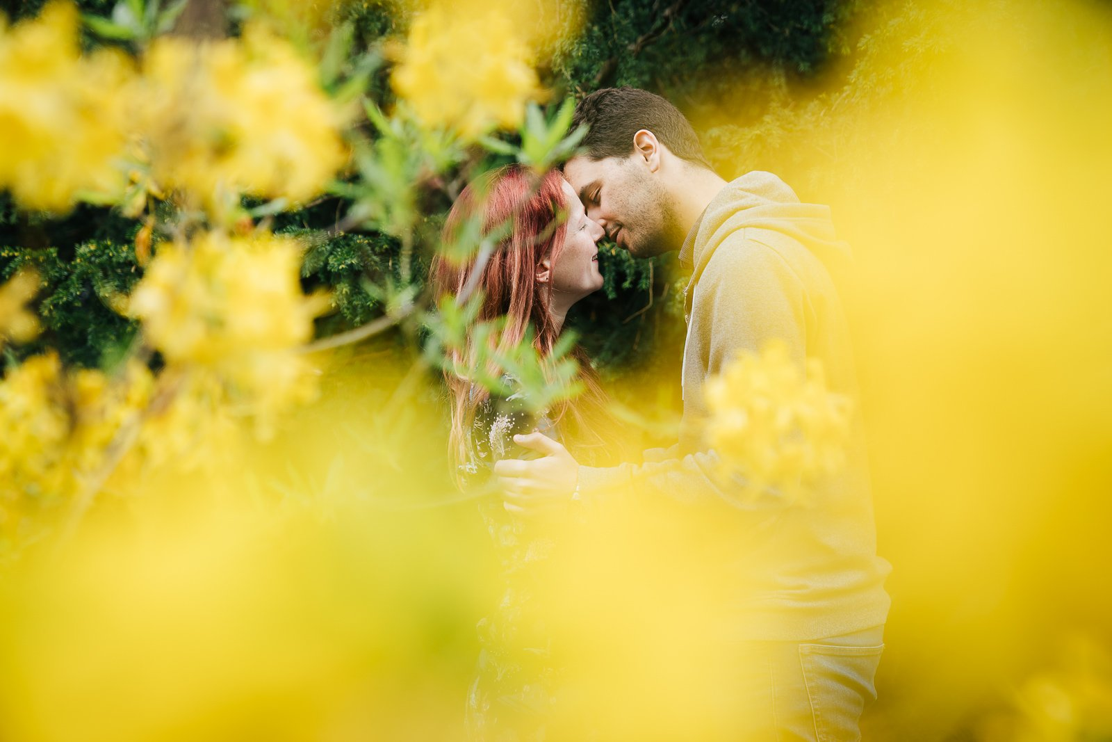 Engaged smiling couple on bench through yellow flowers at Swiss Gardens, Bedfordshire