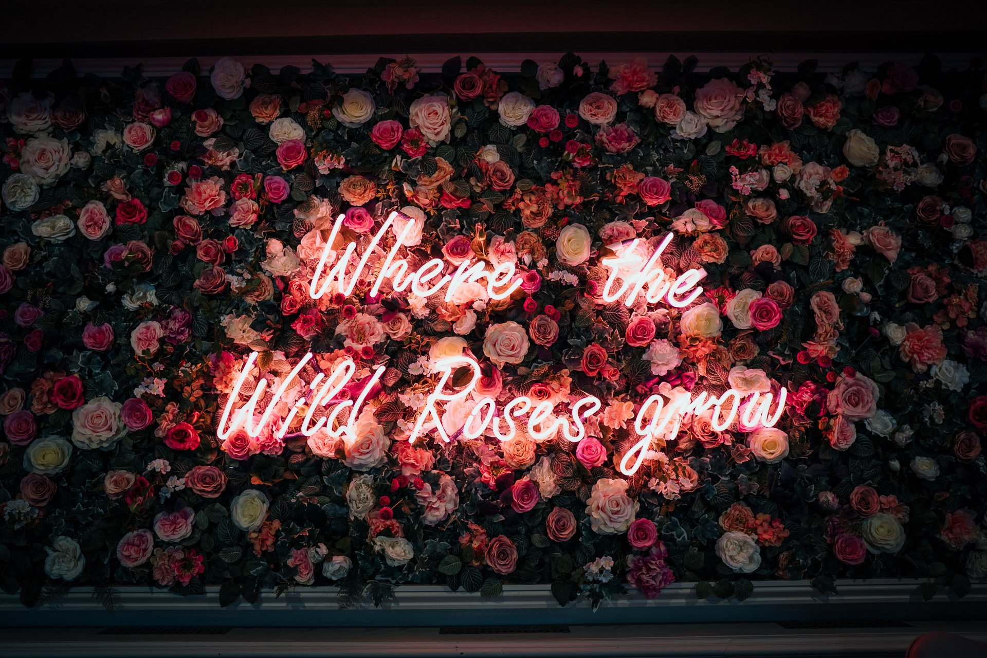 Flower wall with neon text Where the Wild Roses grow