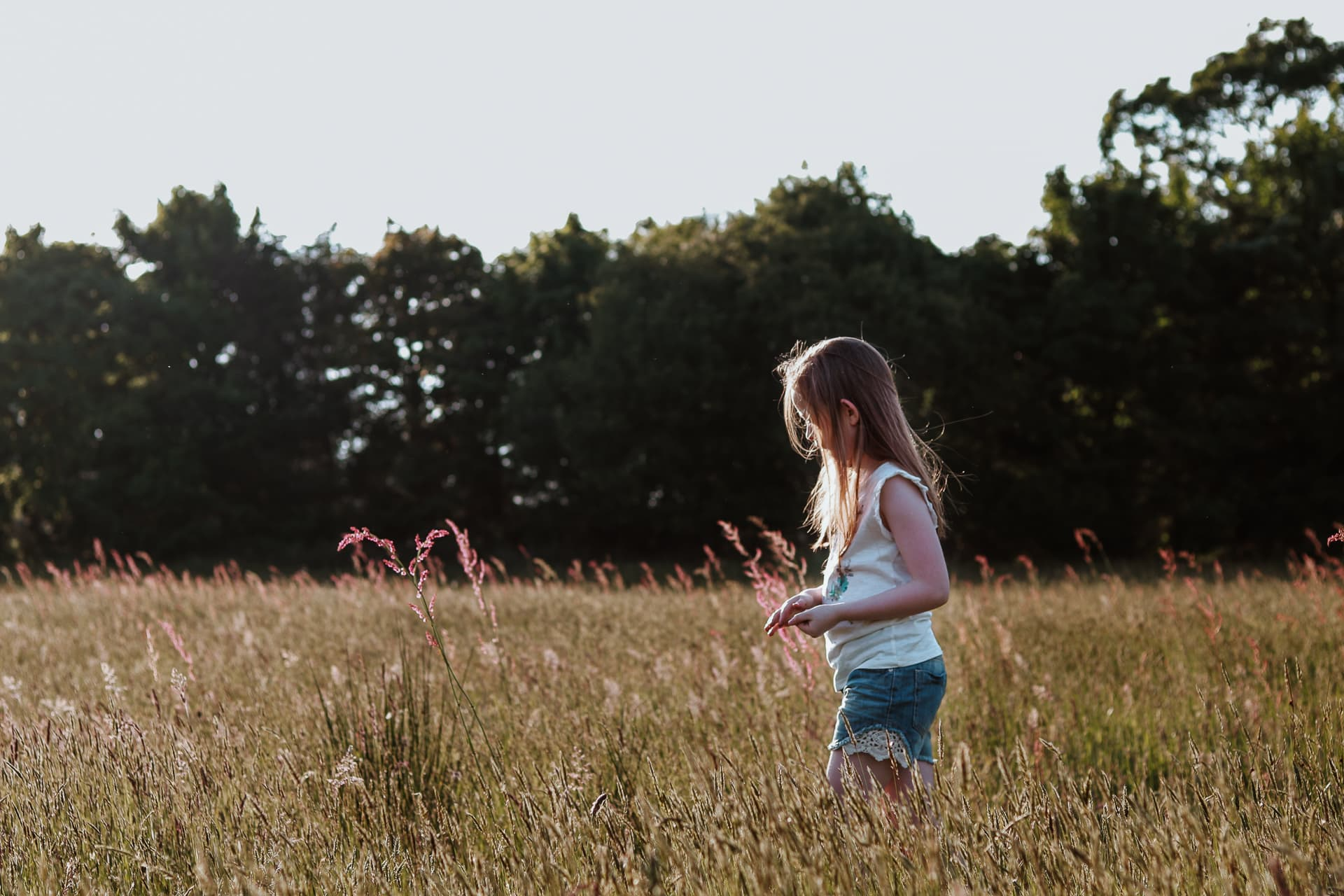 Young girl playing with grass seeds in a sunny field